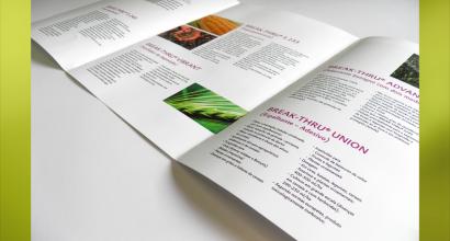Catálogo Digital - Evonik