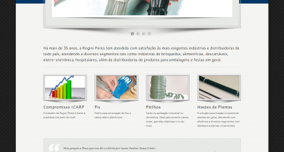 Website Wordpress Rogini Peres