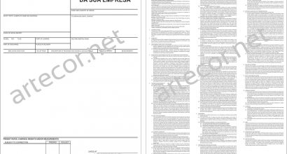 Documento Bill of Lading